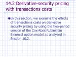 14 2 derivative security pricing with transactions costs