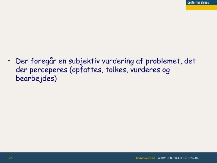 Der foregår en subjektiv vurdering af problemet, det der perceperes (opfattes, tolkes, vurderes og bearbejdes)