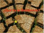 qu es la resiliencia