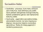 saviauklos b dai1