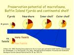 preservation potential of macrofauna baffin island fjords and continental shelf