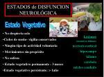 estados de disfuncion neurol gica