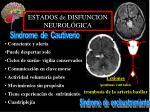 estados de disfuncion neurol gica2