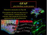 gfap glial fibrillary acidic protein