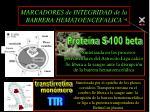 marcadores de integridad de la barrera hematoencefalica