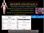 muerte encefalica desacople autonomico cardiovascular