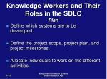 knowledge workers and their roles in the sdlc plan