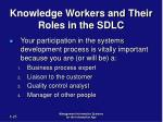 knowledge workers and their roles in the sdlc