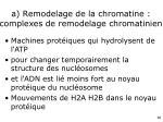 a remodelage de la chromatine complexes de remodelage chromatinien