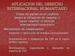 aplicaci n del derecho internacional humanitario