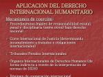 aplicaci n del derecho internacional humanitario2