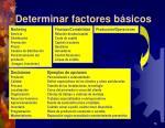 determinar factores b sicos