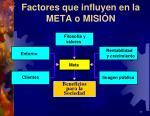 factores que influyen en la meta o misi n
