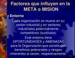 factores que influyen en la meta o mision1