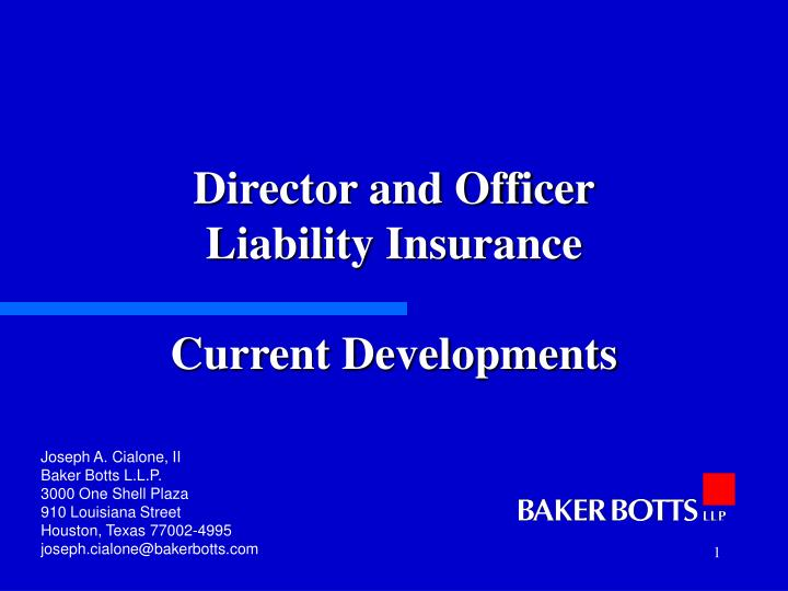 Director and officer liability insurance current developments