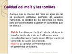 calidad del ma z y las tortillas
