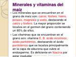minerales y vitaminas del ma z
