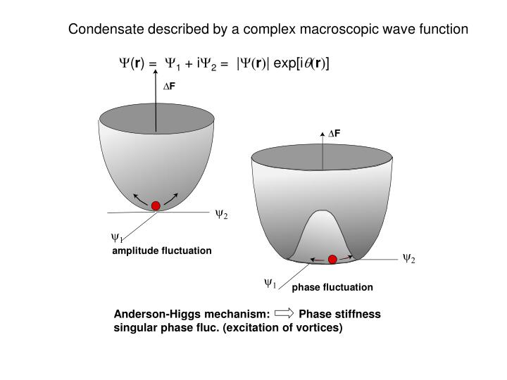Condensate described by a complex macroscopic wave function