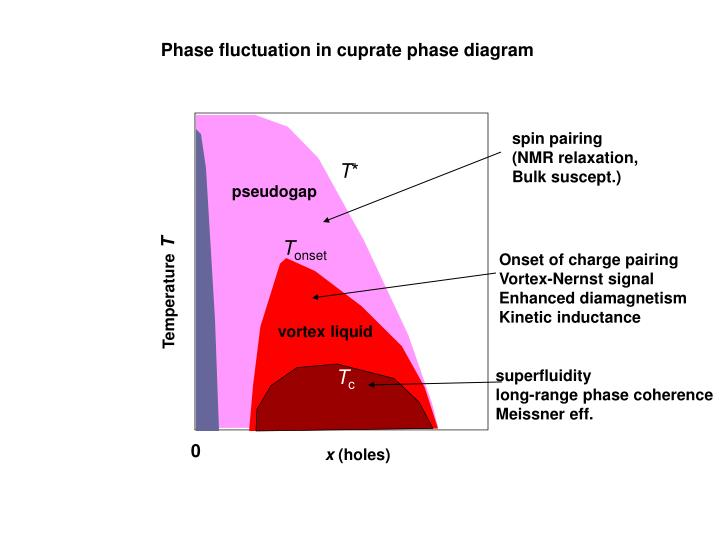 Phase fluctuation in cuprate phase diagram