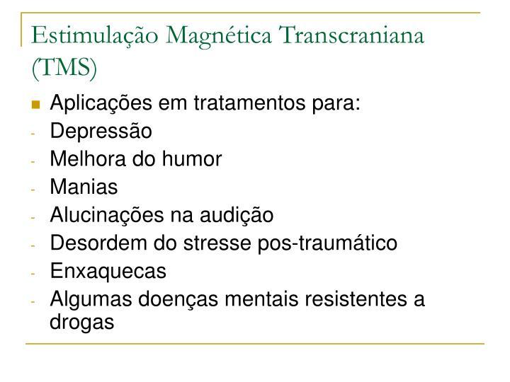 Estimulação Magnética Transcraniana (TMS)