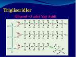 trigliseridler gliserol 3 adet ya asidi