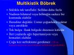 multikistik b brek