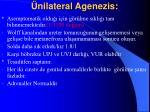 nilateral agenezis