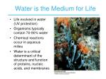 water is the medium for life