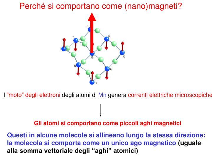 Perché si comportano come (nano)magneti?