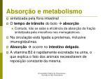 absor o e metabolismo4