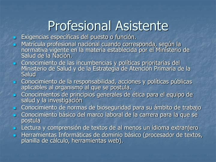 Profesional Asistente