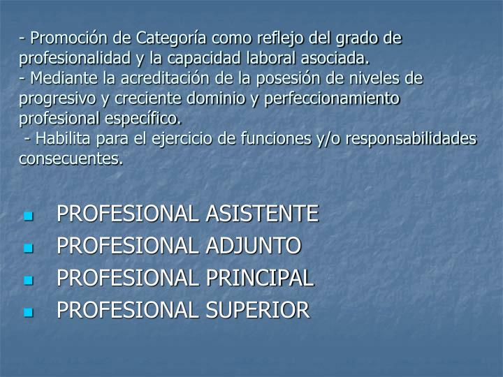 - Promoción de Categoría como reflejo del grado de profesionalidad y la capacidad laboral asociada.