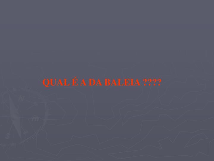 QUAL É A DA BALEIA ????