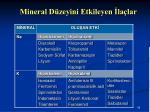 mineral d zeyini etkileyen la lar1
