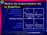 matriz de capacidades de la empresa