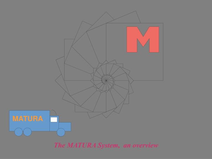 The matura system an overview