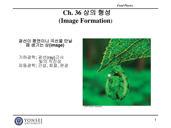 ch 36 image formation n.