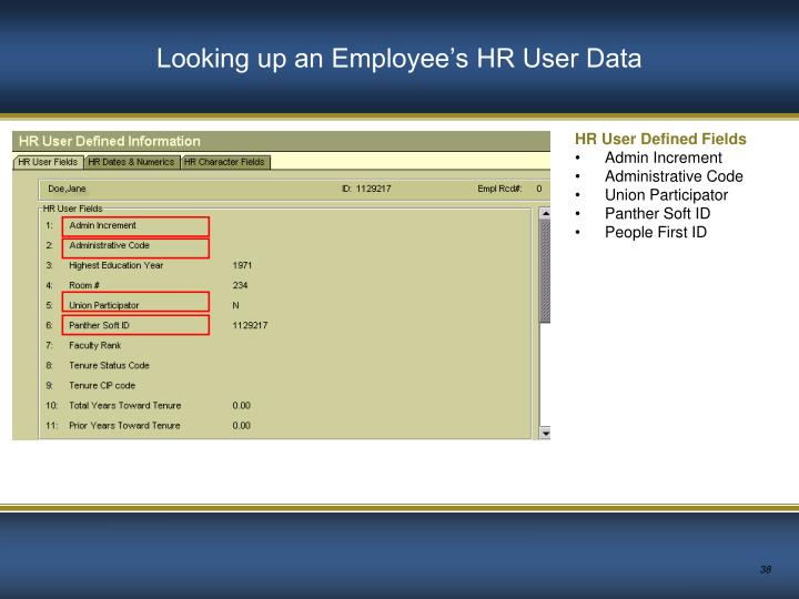 Looking up an Employee's HR User Data