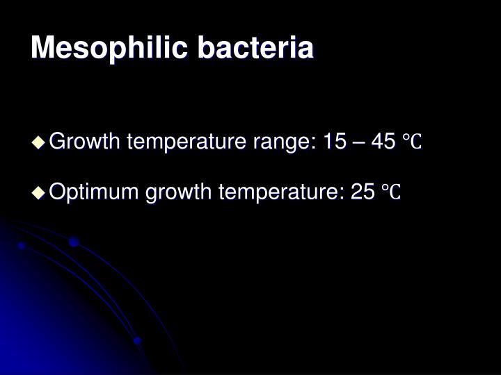 Mesophilic bacteria