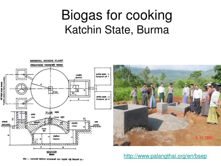 Biogas for cooking