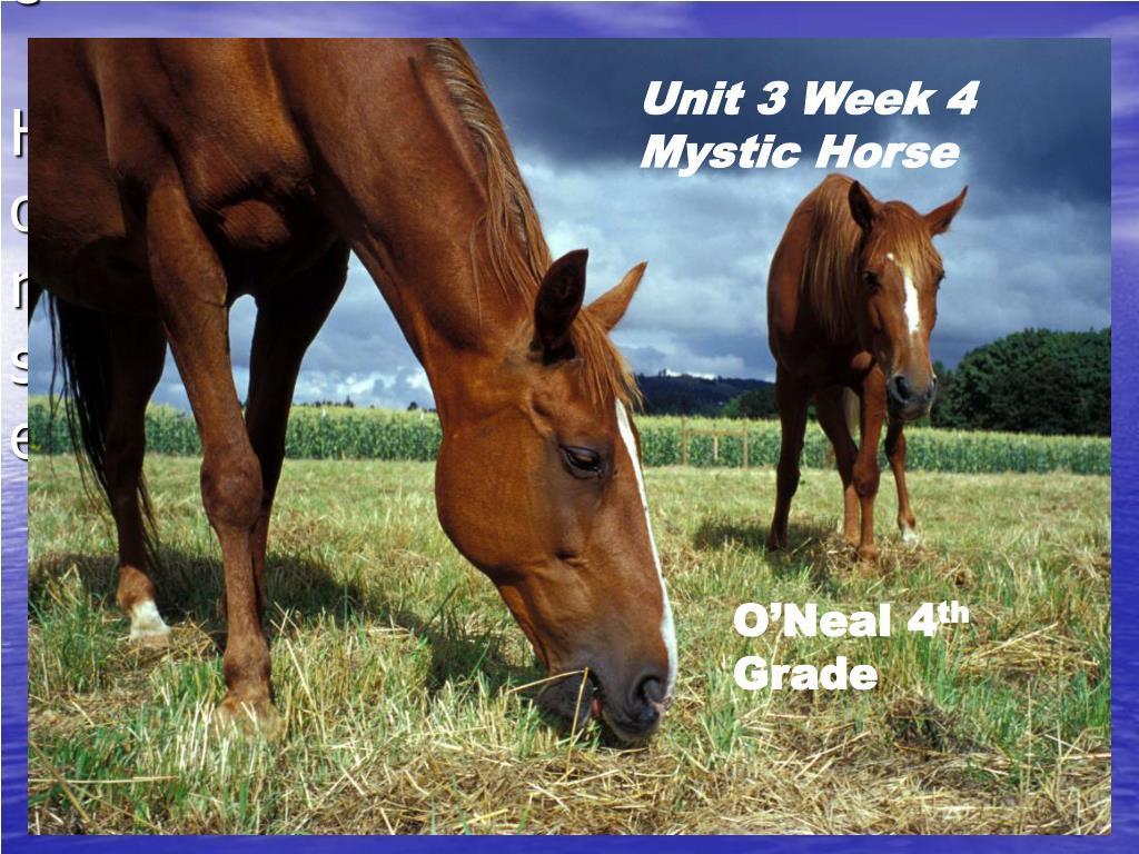 unit 3 week 4 mystic horse l.
