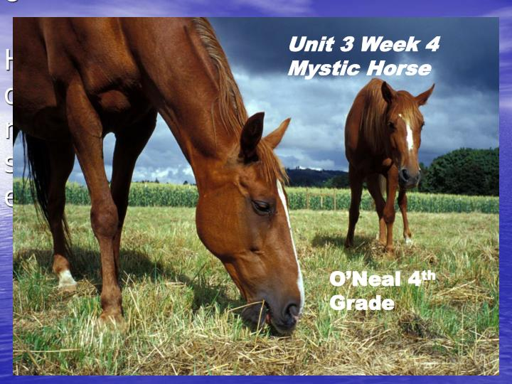 Unit 3 week 4 mystic horse
