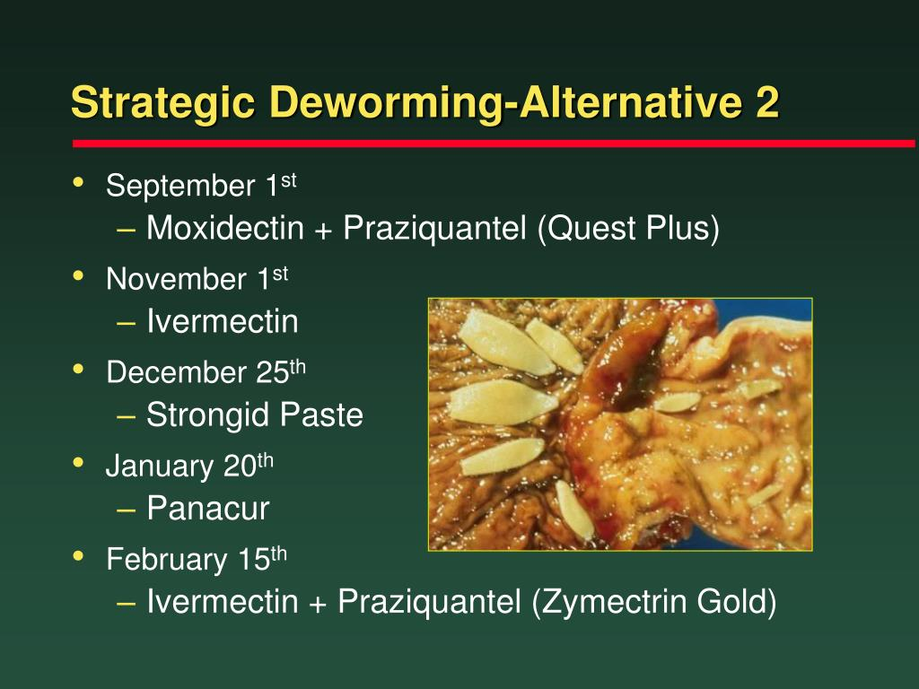 Strategic Deworming-Alternative 2