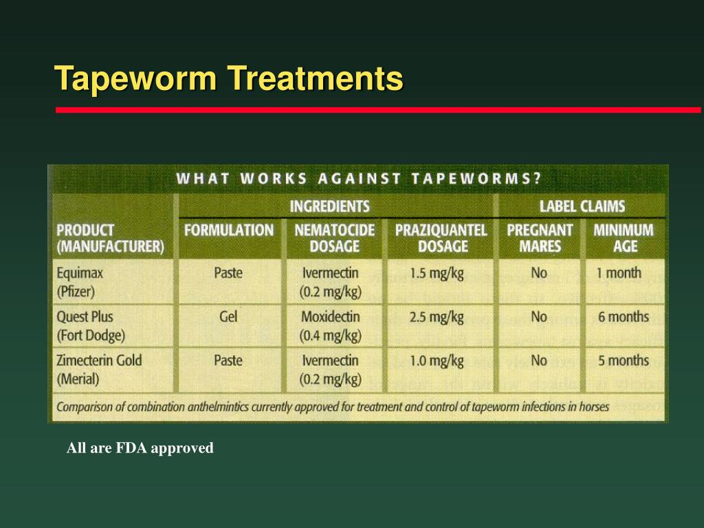 Tapeworm Treatments