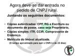 agora deve se dar entrada no pedido de cnpj rural