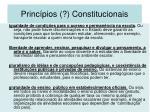 princ pios constitucionais