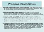 princ pios constitucionais1
