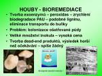 houby bioremediace
