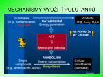 mechanismy vyu it polutant