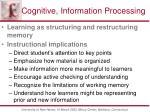 cognitive information processing2